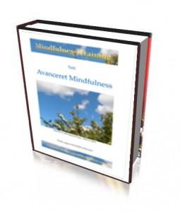 MindfulnessAvanceretDK