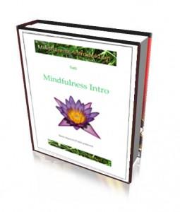 MindfulnessIntroDK