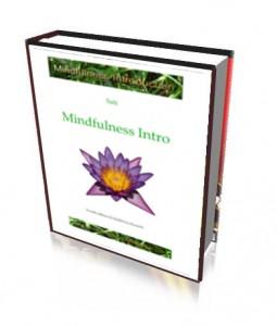 MindfulnessIntroUS